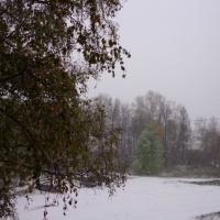 Фотоотчёт «Первый снег»