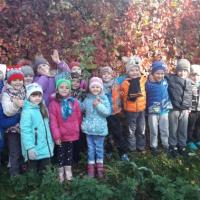 Проект по экологическому воспитанию в старшей группе «Золотая осень!»