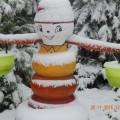 Первый снег в моем саду (фоторепортаж)