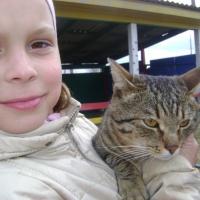 Конспект познавательной прогулки «Наблюдение за кошкой»