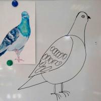Занятие по рисованию с детьми 5–6 лет «Голубь»