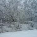 Фотоотчет «Красавица зима пришла»