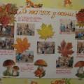 Фотоотчет «Осень-Волшебница»