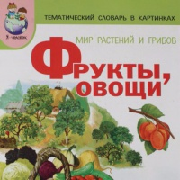 Проект для детей 2-ой младшей группы «Овощи и фрукты— полезные продукты»