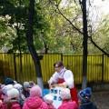 Психолого-логопедический квест, посвященный Всемирному Дню защиты животных «В гостях у Василис»