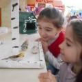 Экологический проект «Покормите птиц зимой»