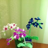 Мастер-класс «Орхидеи из синельной проволоки»
