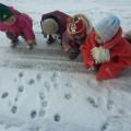 Конспект зимней прогулки «Следы на снегу» во второй младшей группе