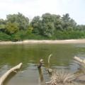 Фотозарисовка «Река Кубань»