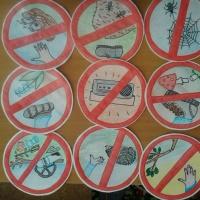 Конспект НОД по экологическому воспитанию в подготовительной группе «Красная книга»