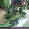 Макеты природных зон для средней группы детского сада