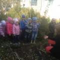 Информационный проект «Что растет на огороде?»