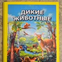Лэпбук «Дикие животные» с загадками, играми и карточками