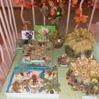 Фотоотчёт о выставке поделок из природного материала «Золотая осень»