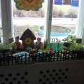 «Веселый огород». Конкурс «Огород на окне»