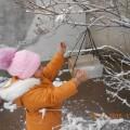 Акция «Покормите птиц зимой» (фотоотчёт)