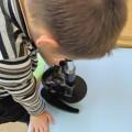 Фотоотчет «Опытно-экспериментальная деятельность. Знакомство с микроскопом»