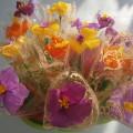 Мастер-класс «Цветок для мамы»