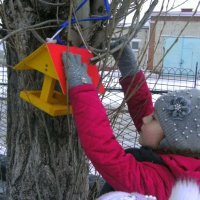 Акция «Поможем птицам!»