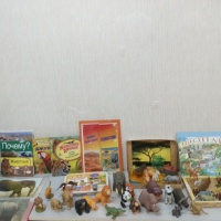 Краткосрочный познавательно-творческий проект «Животные Африки» для воспитанников старшей специальной группы 5–6 лет.