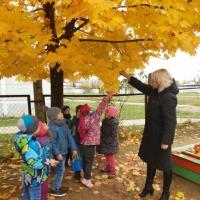 Развивающая прогулка в детском саду «Мир вокруг нас»