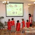 Конспект занятия по развитию речи «Гласные звуки» в старшей логопедической группе с применением кинетического песка