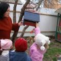 Проект для детей средней группы «Птицы»