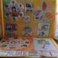 Лэпбук «Деревья» для детей старшего дошкольного возраста