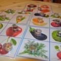 Дидактическая настольно-печатная игра «Лото «Семена»