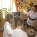 Конспект непосредственно образовательной деятельности в подготовительной группе «Извержение вулкана»