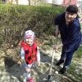 Экологический проект «Деревья— наши друзья»