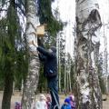 Проект «Путешествие к птицам в лес весенний» подготовительной группы компенсирующей направленности