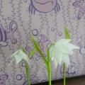 Мастер-класс для родителей и воспитателей по изготовлению цветов из подручных материалов «Первые цветы— подснежники»