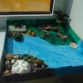 Макет «Пресмыкающиеся» для детского сада своими руками. Мастер-класс с пошаговыми фото
