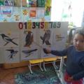 Фотоотчет НОД по окружающему миру в средней группе «Зимующие птицы».