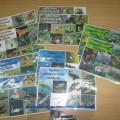 Дидактическая игра-лото «Флора и фауна Оренбургской области»