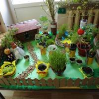 Мини-огород на окне