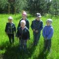 Экскурсия в лес во второй младшей и средней группе «Здравствуй лес, дремучий лес!»