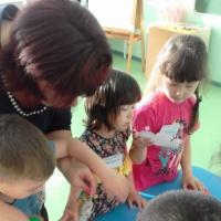 Фотоотчет о конкурсе профессионального мастерства педагогов дошкольных образовательных организаций «Лесенка успеха»