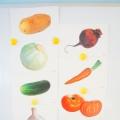 Конспект по окружающему миру на тему: «Овощи» для второй младшей группы