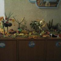 Фотоотчет «Осенняя выставка работ «Краски осени»