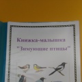 Книжка-малышка «Зимующие птицы»