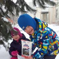 Беседа «Покормите птиц зимой» с детьми подготовительной группы