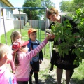 Весенний праздник «Эколята-дошколята» в рамках экологического проекта «Цвети, Земля!»
