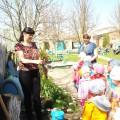 Фотоотчёт о проведении «Дня древонасаждения» в детском саду