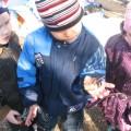 Работа с детьми над проектом «Удивительный мир жуков» (Конспекты НОД)