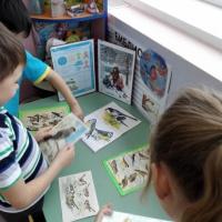 Педагогический проект «Птицы— наши друзья» для детей подготовительной группы