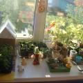Фотоотчет конкурса «Огород на окне».