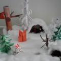 Конспект занятия по ознакомлению с дикими животными «Путешествие по зимнему лесу»