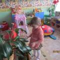 Фотоотчет о трудовой деятельности детей группы раннего развития